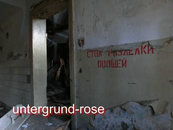 http://s3.uploads.ru/t/KDdAv.jpg