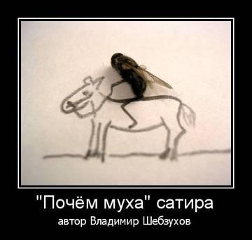 http://s3.uploads.ru/t/Kuo6T.jpg