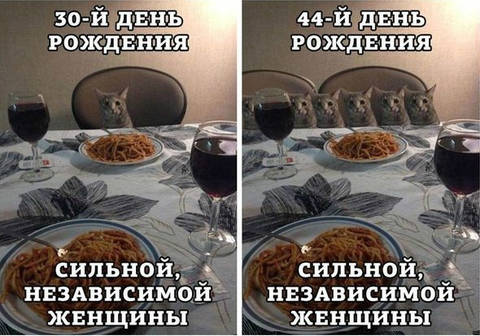 http://s3.uploads.ru/t/P8AJc.jpg