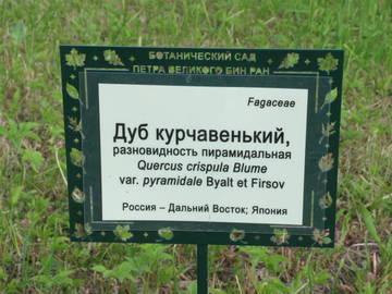 http://s3.uploads.ru/t/RFAaq.jpg