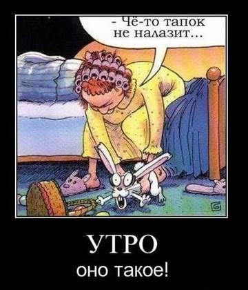 http://s3.uploads.ru/t/Sd6u5.jpg