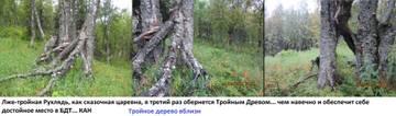 http://s3.uploads.ru/t/VUw49.jpg