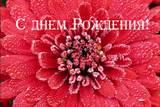 http://s3.uploads.ru/t/VXOij.jpg