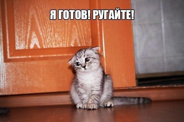 http://s3.uploads.ru/t/WS1No.jpg