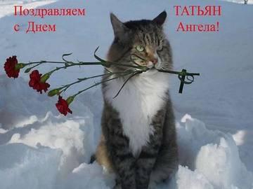 http://s3.uploads.ru/t/XDsAS.jpg