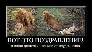 http://s3.uploads.ru/t/XGULB.jpg