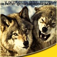 http://s3.uploads.ru/t/ZUseQ.png