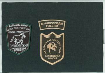 http://s3.uploads.ru/t/ZbpsQ.jpg