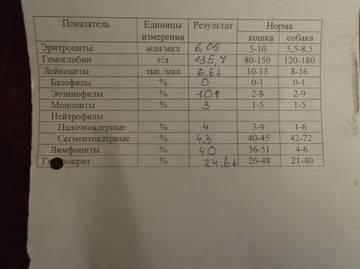 http://s3.uploads.ru/t/cpCtj.jpg