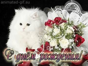 http://s3.uploads.ru/t/fsSN0.jpg