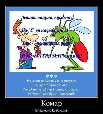 http://s3.uploads.ru/t/giV2l.jpg