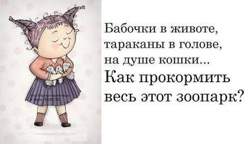 http://s3.uploads.ru/t/hBdeu.jpg