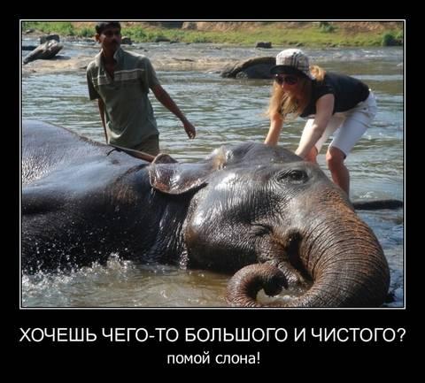http://s3.uploads.ru/t/iL6JB.jpg