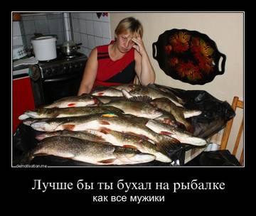 http://s3.uploads.ru/t/oN5YV.jpg