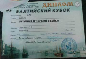 http://s3.uploads.ru/t/oq4fd.jpg