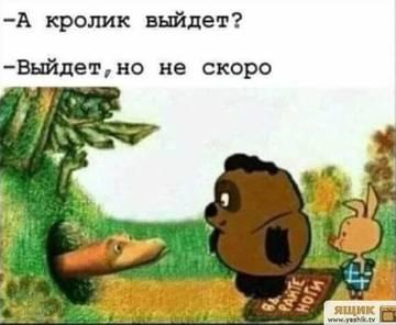 http://s3.uploads.ru/t/oqIPr.jpg
