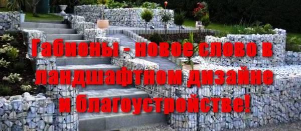 http://s3.uploads.ru/t/qrctP.jpg