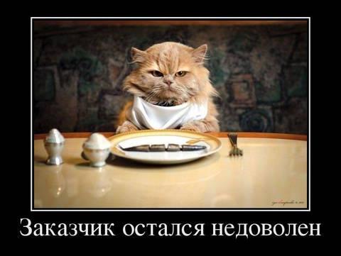 http://s3.uploads.ru/t/qvR9h.jpg