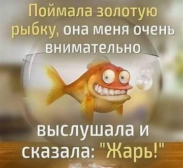 http://s3.uploads.ru/t/rLbiJ.jpg