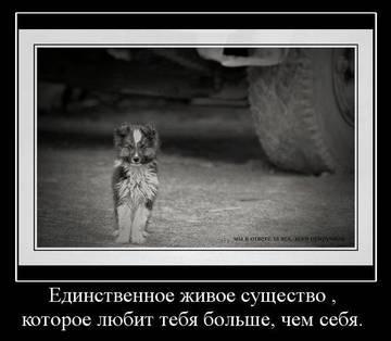 http://s3.uploads.ru/t/sH9Y3.jpg