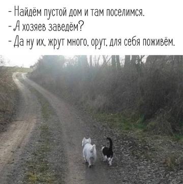 http://s3.uploads.ru/t/seGuF.png
