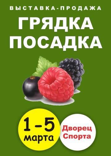 http://s3.uploads.ru/t/sunRy.jpg