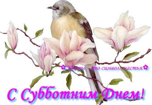 http://s3.uploads.ru/t/uyUj7.jpg