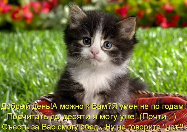 http://s3.uploads.ru/t/wvh5P.jpg