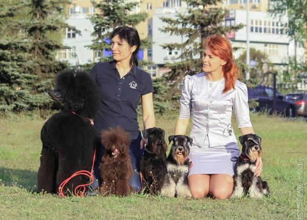 http://s3.uploads.ru/t/xCoQU.jpg