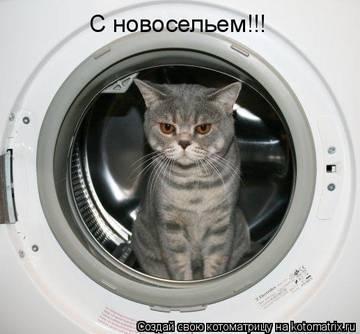 http://s3.uploads.ru/t/xdeCa.jpg