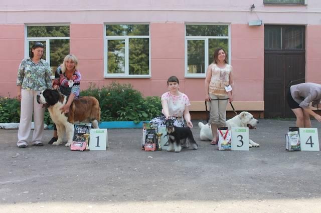 http://s3.uploads.ru/vETu1.jpg