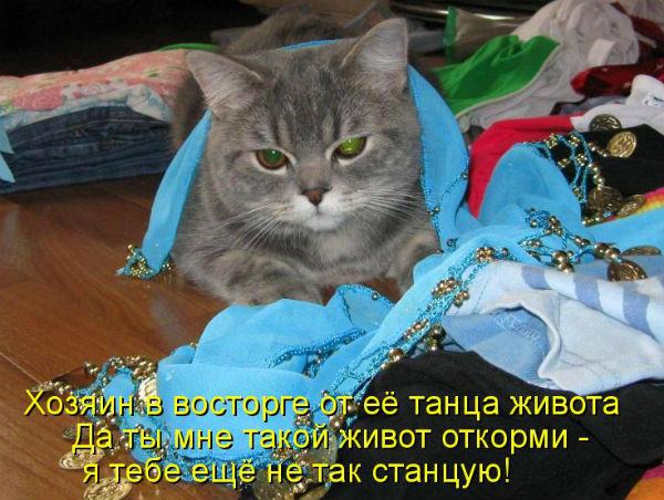 http://s3.uploads.ru/wfjgC.jpg