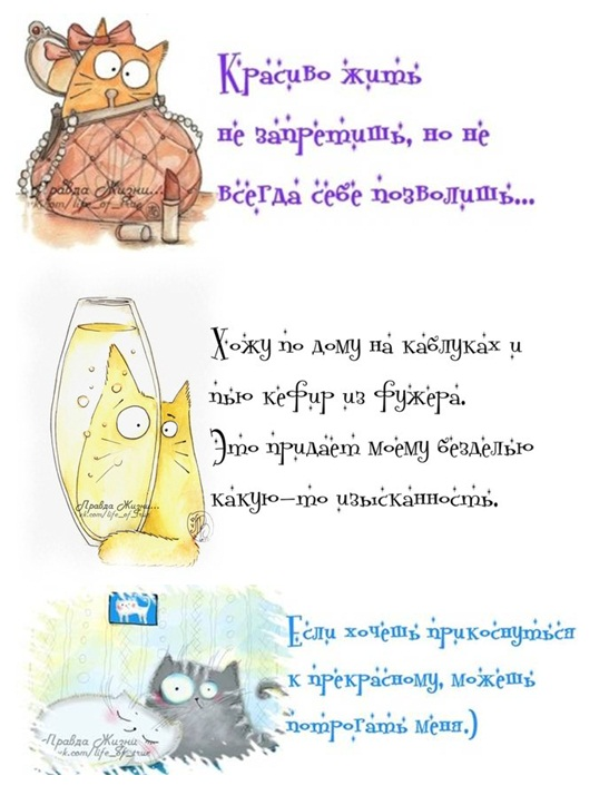 http://s3.uploads.ru/xKnfX.jpg