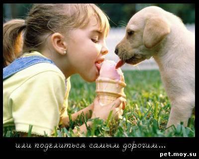 http://s3.uploads.ru/z182K.jpg